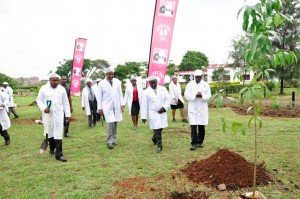 Team arrives for tree planting session at Dandora Factory Complex